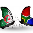 Постер, плакат: Two butterflies with flags of relations Algeria and South Africa