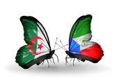 две бабочки с флагами отношения алжира и экваториальной гвинеи — Стоковое фото