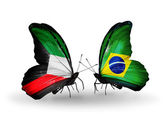 Two butterflies with flags of relations Kuwait and Brazil — Stock Photo