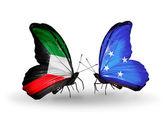 Duas borboletas com bandeiras das relações, kuwait e micronésia — Fotografia Stock