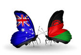 Deux papillons avec des drapeaux des relations entre l'Australie et le malawi — Photo