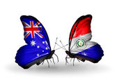 две бабочки с флагами отношений австралии и парагвай — Стоковое фото