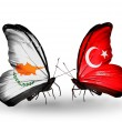 Two butterflies with flags of relations Cyprus and Turkey — Stock Photo #41884881