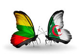 Two butterflies with flags of relations Lithuania and Algeria — Stock Photo