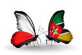 Polonya ve mozambik bayrakları taşıyan iki kelebek — Stok fotoğraf