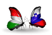 Butterflies with flags Hungary and Slovenia — Stock Photo