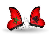 Butterflies with flags Morocco and Albania — Stock Photo