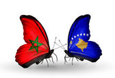 Butterflies with flags Morocco and Kosovo — Stock Photo