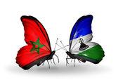 Mariposas con banderas de marruecos y lesotho — Foto de Stock
