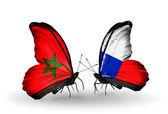 Dos mariposas con banderas de marruecos y checa — Foto de Stock