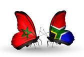 Dos mariposas con banderas de marruecos y sudáfrica — Foto de Stock