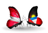 Two butterflies with flags of Latvia and Antigua and Barbuda — Stock Photo