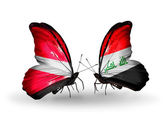 Two butterflies with flags of Latvia and  Iraq — Stock Photo