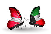 Two butterflies with flags of Latvia and  Kuwait — Stock Photo