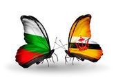 Butterflies with Bulgaria and Brunei flags on wings — Stock Photo