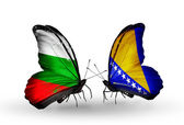 Butterflies with Bulgaria and Bosnia and Herzegovina flags on wings — Stock Photo