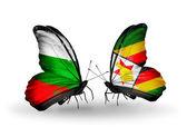Vlinders met bulgarije en zimbabwe vlaggen op vleugels — Stockfoto