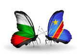 Butterflies with Bulgaria and Kongo flags on wings — Stock Photo