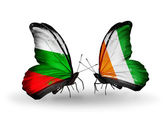 Butterflies with Bulgaria and Cote Divoire flags on wings — Stock Photo