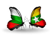 Butterflies with Bulgaria and Myanmar flags on wings — Stock Photo