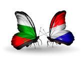 Papillons avec des drapeaux de la bulgarie et de la hollande sur les ailes — Photo