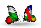 Butterflies with Bulgaria and Central African Republic flags on wings — Stock Photo
