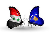 Butterflies with Syria and Kosovo flags on wings — Stock Photo