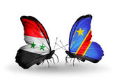Butterflies with Syria and Kongo flags on wings — Foto Stock