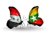 Butterflies with Syria and Myanmar flags on wings — Stock Photo