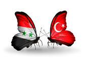 Butterflies with Syria and Turkey flags on wings — Stock Photo