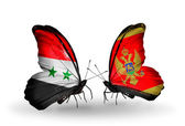 Butterflies with Syria and Montenegro flags on wings — Stockfoto