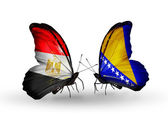 Butterflies with flags of Egypt and Bosnia and Herzegovina — Stock Photo