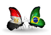 Butterflies with flags of Egypt and Brazil — Stockfoto