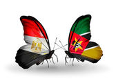 Butterflies with Egypt and Mozambique flags on wings — Stock Photo