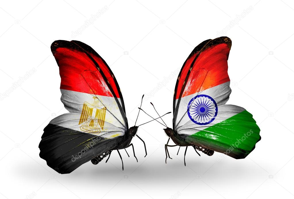 Indian Flag Butterflies: Butterflies With Egypt And India Flags On Wings