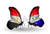 Butterflies with Egypt and Paraguay flags on wings — Stockfoto
