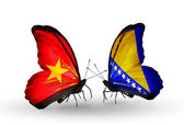 Butterflies with Vietnam and Bosnia and Herzegovina flags on wings — Stock fotografie