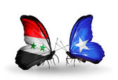 Butterflies with Syria and Somalia flags on wings — Stockfoto