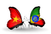 Two butterflies with flags  of Vietnam and Ethiopia — Photo