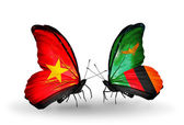 Two butterflies with flags  of Vietnam and Zambia — Photo