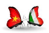 Dos mariposas con banderas de vietnam e irlanda — Foto de Stock