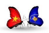 Dos mariposas con banderas de vietnam y kosovo — Foto de Stock