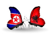 Two butterflies with flags  of  North Korea and Albania — Stock Photo
