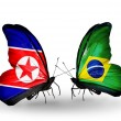 Butterflies with North Korea and Brazil flags on wings — Stock Photo