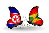 бабочки с северной кореей и гренада флаги на крыльях — Стоковое фото