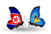 бабочки с северной кореей и сент-люсии флаги на крыльях — Стоковое фото
