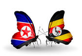 Butterflies with North Korea and Turkey flags on wings — Stock Photo