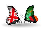 Butterflies with Georgia and Zambia islands flags on wings — Stock Photo