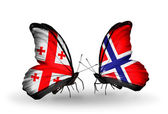 Butterflies with Georgia and Norway flags on wings — Stock Photo