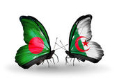 Butterflies with Bangladesh and  Algeria flags on wings — Stock Photo